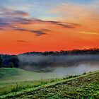 Misty Sunrise - Daily Homework - Day 8 - May 14, 2012 by aprilann