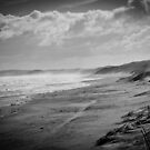 Woolami Beach - Cold & Windy by James Millward