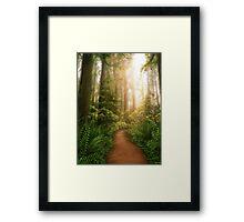 Sanctuary Framed Print