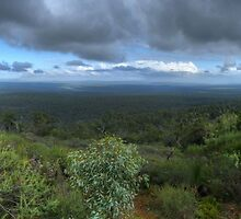 Mt Dale, View from the top, panorama HDR by BigAndRed