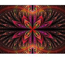 Blooming Apophysis Photographic Print