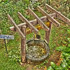 baguio's well by fejant