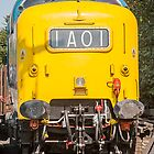 Deltic at rest .55022 by Kit347