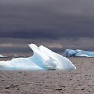 Icebergs , Antarctica by geophotographic