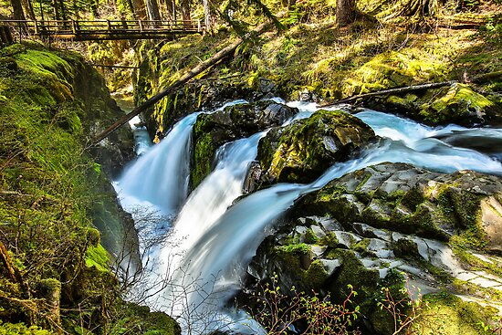 Sol Duc Falls by Jim Stiles