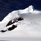 Half Moon Island , Antarctica by geophotographic