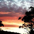 Backyard Sunset by jlv-