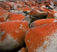 Colours and Shapes, Binalong Bay, Tasmania, Australia. by kaysharp
