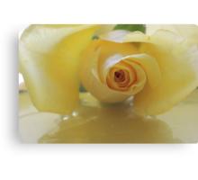 Burst of Sunshine ~ Yellow Rose Canvas Print