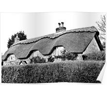 Thatched Poster