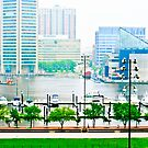 Inner Harbor, Baltimore Md by JackP
