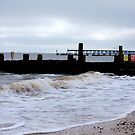 A Vision Of Groynes! by DCLehnsherr