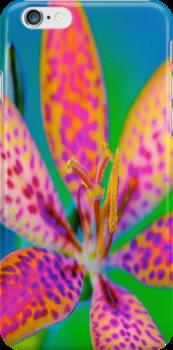 Firelily by Jeff Johannsen