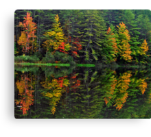 Mother Nature Paints with Water Colors Canvas Print