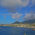 St. Kitts by Nicole  McKinney