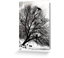 Winter Crows Greeting Card