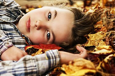 Autumn's Child - Bodhi by Tam  Locke