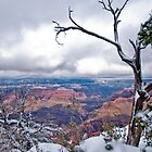 Grand Canyon Snowscape by Sue Knowles