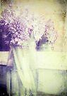 Hyacinth Memory by Sybille Sterk