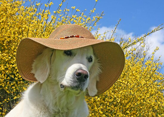 Ditte in a trendy summerhat by Trine