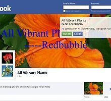 All Vibrant Plants Group on Facebook by ♥⊱ B. Randi Bailey