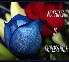 NOTHING IS IMPOSSIBLE by BOLLA67