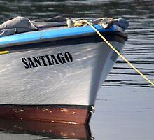 Santiago Bow by lynn carter
