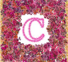 """C"" Is For China Rose by Michael Rubin"