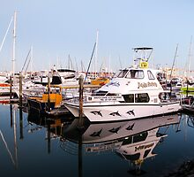 reflections at the marina by Anne Scantlebury