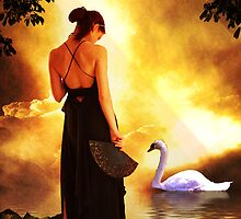 Swan Sunset by George Lenz