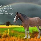Sympathy Card For Loss Of Horse by Eve Parry
