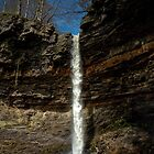Hardraw Force  by Steve Bryant