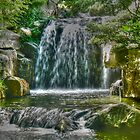 waterfall in chinese garden by warren dacey