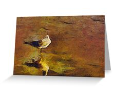 BIRD IN THE WET SAND Greeting Card