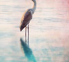 Great Blue Heron by Megan Noble