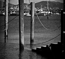 On the Dock by emiphotography