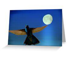 Hummingbird Moon II Greeting Card