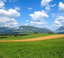 A Wheat Field in the Austrian Alps. by Lee d'Entremont
