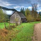 Barn along the Country Road by Tracy Riddell