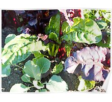 leafy vegetables Poster