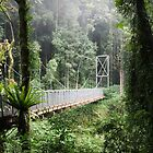 A bridge to Gondwanaland by Fran53