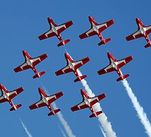 Canadian Snowbirds In Flight Formation by Bob Christopher