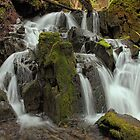 Mossy Rocks by EagleHunter