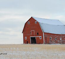 Big Red Barn by Trish Sweett