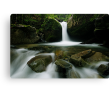 Flow to me Canvas Print