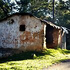 Once a home to someone.....@kodaikanal - India by marick