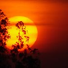 Sunset @ Mysore -  by marick