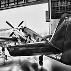 NX1204 Mustang P51-C by Pirate77