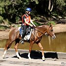 Endurance Rider at Colo River Bridge by SylanPhotos
