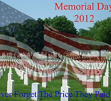 Memorial Day 2012 by barnsis